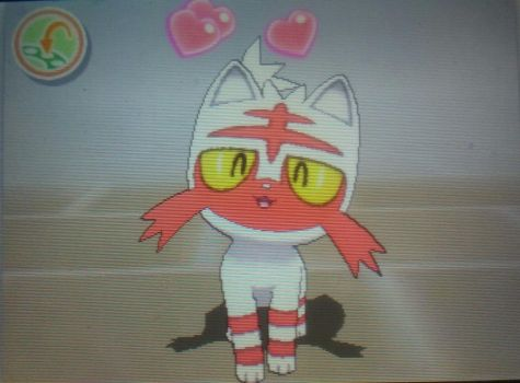 Finally Shiny Litten after 480+ Eggs! by Rotommowtom