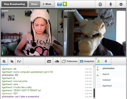 Tinychat derps by PintoFire