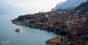 Limone 2 by LunaFeles
