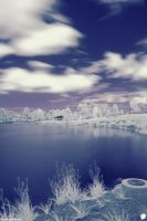 IR Test 4 by ThEReAlWaZzAr