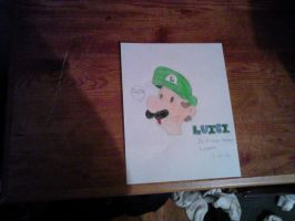 My Drawing of Luigi by ksl13