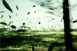 Fan Art Avatar Airbender by RacoonFactory