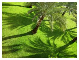 Lawn of Palms by taeliablack