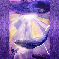 Whales by yanadhyana
