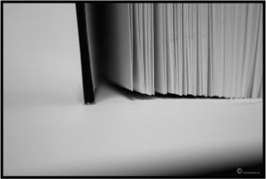 pages - bw by Lapapunk