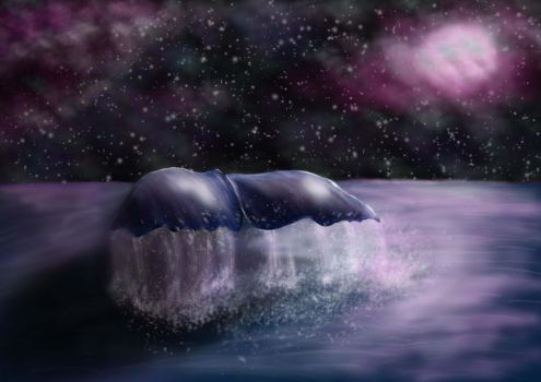 Whale at Night by carinamit