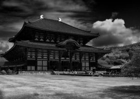 Todai-ji Temple by TheRaider