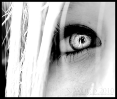 Out of sight behind these eyes by sar-the-scare