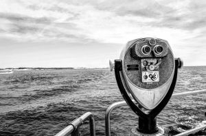 A view  black and white by takeanotherpic020