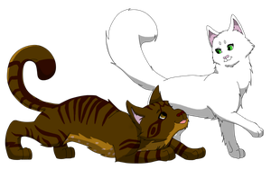 Couple Number Five: Whitewing and Birchfall by miudream