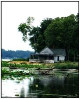 House On The Mississipi by DimmedFaith