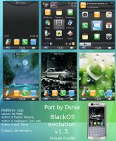 BlackOS evolution v1.3 P990 po by dsma