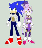 Sonic and Blaze by Pyrus-Leonidas