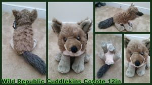 Wild Republic Cuddlekins Coyote 12in by Vesperwolfy87