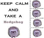 Keep Calm and Take a Hedgehog by StupidPoptart