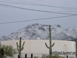 Snow in Tucson (Can You Believe It?) by KeithEKimball