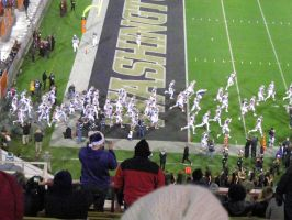UW Huskies takeing the field by BigMac1212