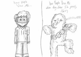 I might Eventually Start Studying Wookie! by theINAshow