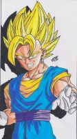DRAGONBALL Z - VEGETTO SUPER SAYAN! by TriiGuN
