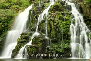 Green Water 1 by asylumimages