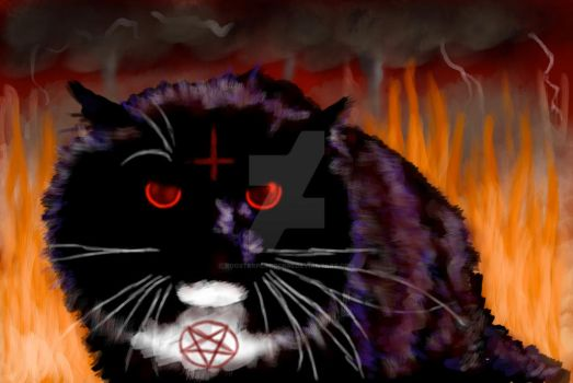 Cat From Hell by roosterpeacock65
