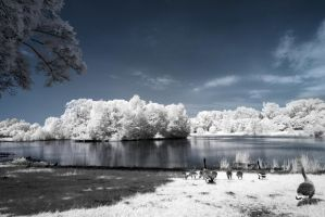 Tag am See by myINQI