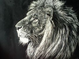 Lion by atnason