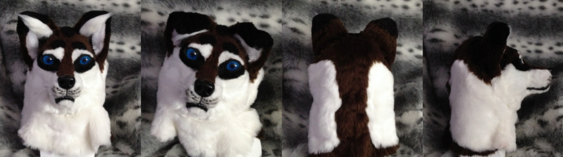 Coyo/Wolf Head  (Full Suit for Sale) by WolfOfTheWinterMoon