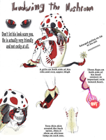Ludwing the Mushroom ::CONCEPT SHEET:: by Reptonic