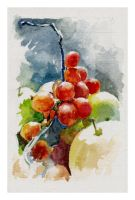 Quick watercolours practice fruits by SILENTJUSTICE