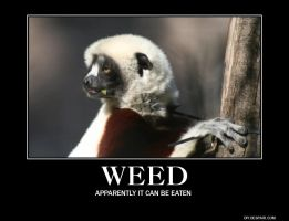 weed by Aki-Lesete