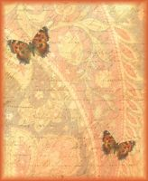 ATC Background Butterflies by ValerianaSTOCK