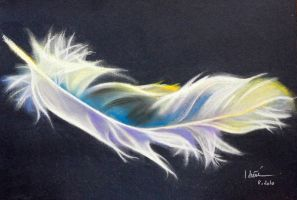 feather by hieuorion