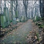 Jewish cemetery in Cracow I by mikeb79