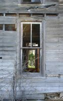 Holton Abandoned House 2 by Falln-Stock