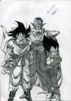 Goku, Piccolo and Vegeta by Nicole-de-Groot