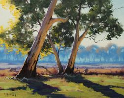 Whittlesea Gums by artsaus
