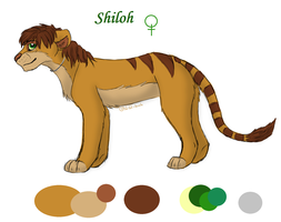 New Ref for Shiloh by Shiloh-Tovah