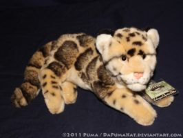 Webkinz Clouded Leopard Plush by dapumakat