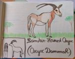 Scimitar-Horned Oryx - Animal of October 14 by MoonyMina