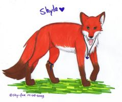 Shyla copic by shy-fox