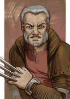 Daily Sketches Old man Logan by fedde