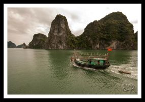 Ha Long Bay - Vietnam - Series: No 11 by SnapperRod