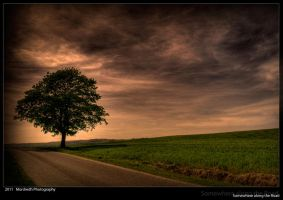 Somewhere along the Road by Mordredh