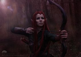 The Archer by F-elicia
