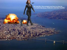BLACK WIDOW VS S.H.I.E.L.D by darthbriboy