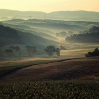terre di toscana 0649 by bagnino