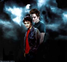 Harry Potter Cedric Diggory . by Iren--Loxley