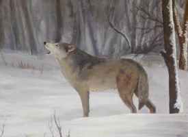 Painting: Wolf in the snow by Evilddragonqueen