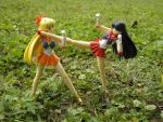 Sailor Mars and Venus training. by RohnnyFive
